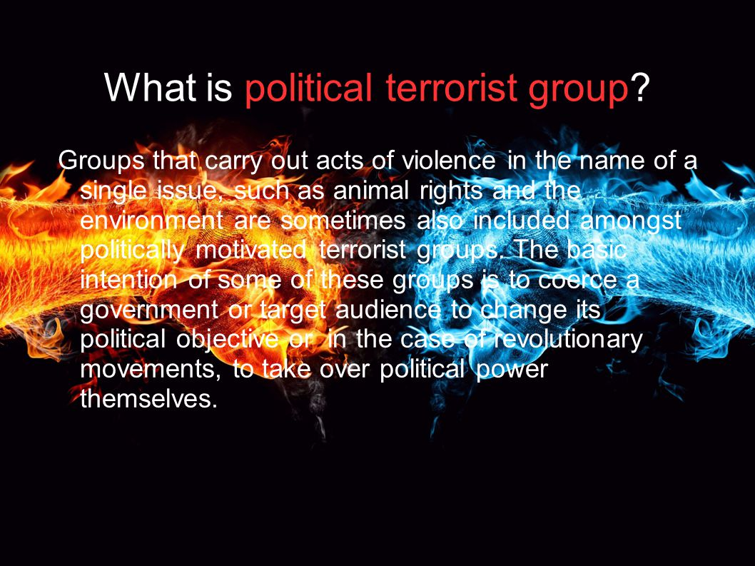 What is political terrorist group.