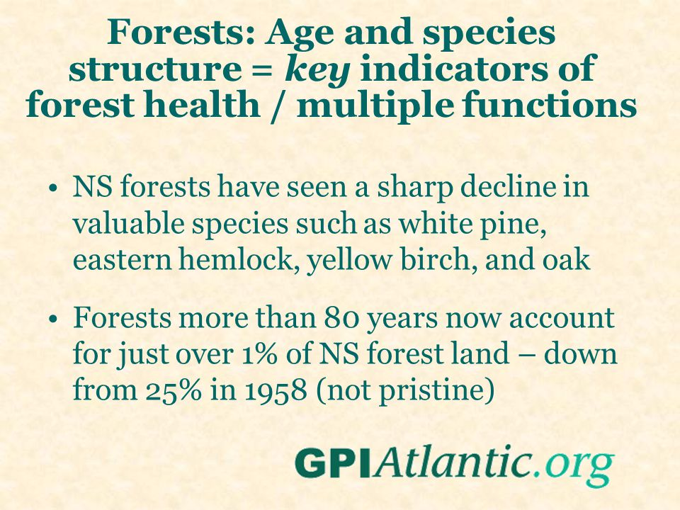 Forests: Age and species structure = key indicators of forest health / multiple functions NS forests have seen a sharp decline in valuable species such as white pine, eastern hemlock, yellow birch, and oak Forests more than 80 years now account for just over 1% of NS forest land – down from 25% in 1958 (not pristine)