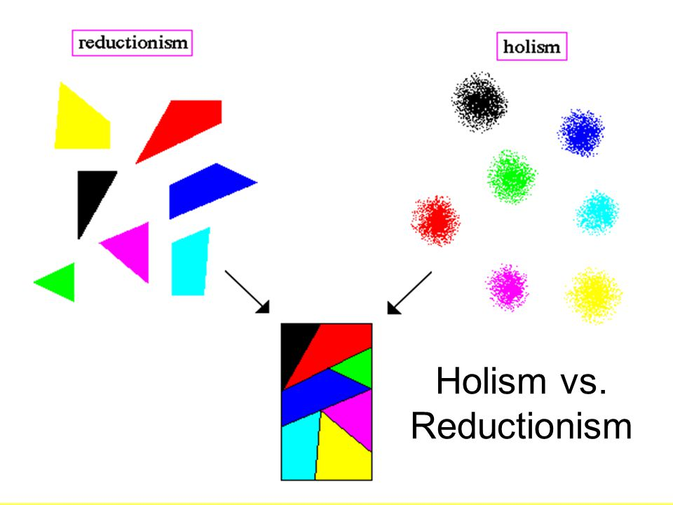 Holism vs. Reductionism