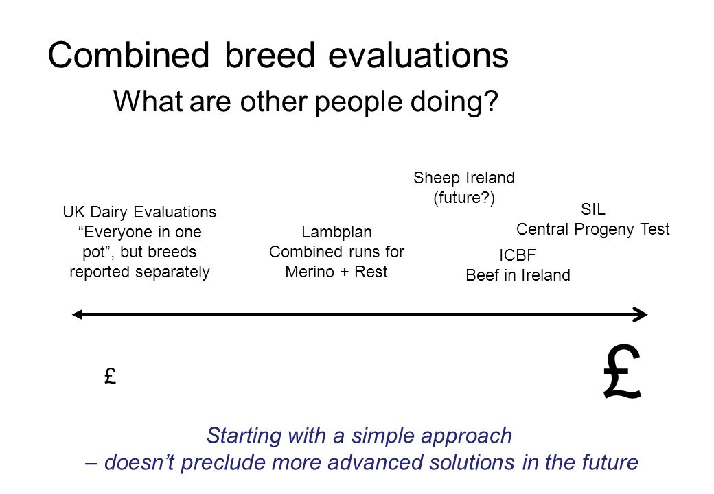 Combined breed evaluations What are other people doing.
