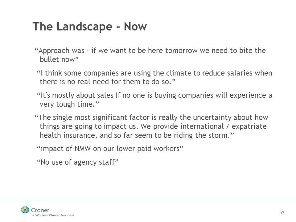 17 The Landscape - Now Approach was - if we want to be here tomorrow we need to bite the bullet now I think some companies are using the climate to reduce salaries when there is no real need for them to do so. It s mostly about sales If no one is buying companies will experience a very tough time. The single most significant factor is really the uncertainty about how things are going to impact us.