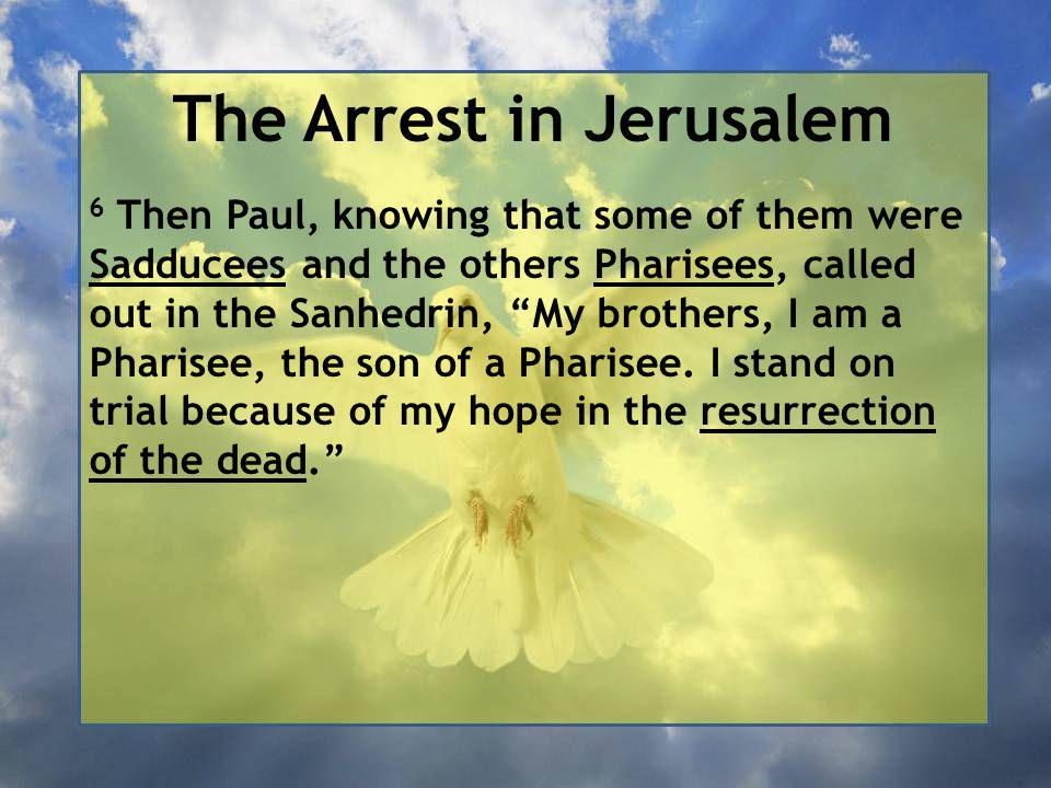 The Arrest in Jerusalem 6 Then Paul, knowing that some of them were Sadducees and the others Pharisees, called out in the Sanhedrin, My brothers, I am a Pharisee, the son of a Pharisee.