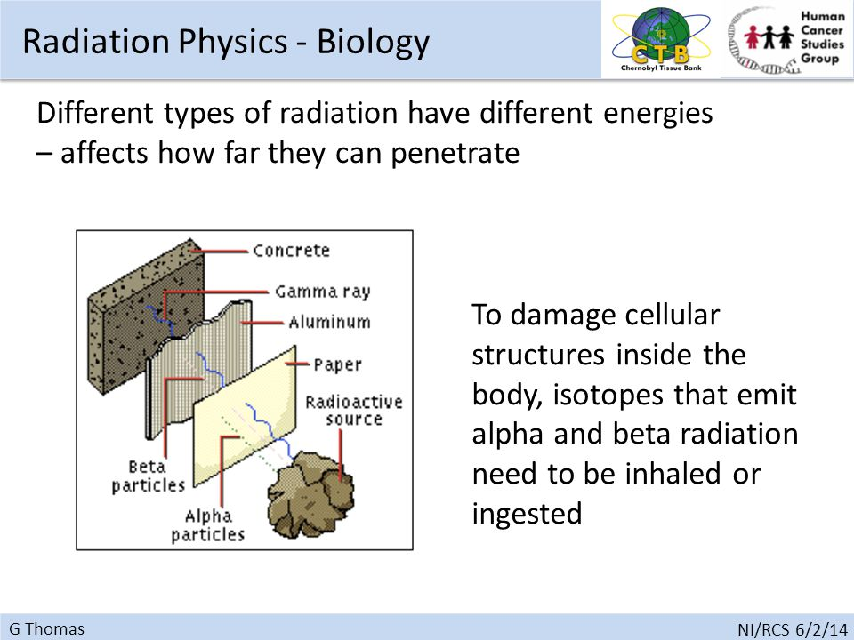 G Thomas NI/RCS 6/2/14 To damage cellular structures inside the body, isotopes that emit alpha and beta radiation need to be inhaled or ingested Different types of radiation have different energies – affects how far they can penetrate Radiation Physics - Biology