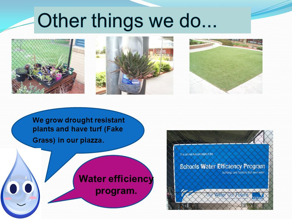 Water efficiency program.