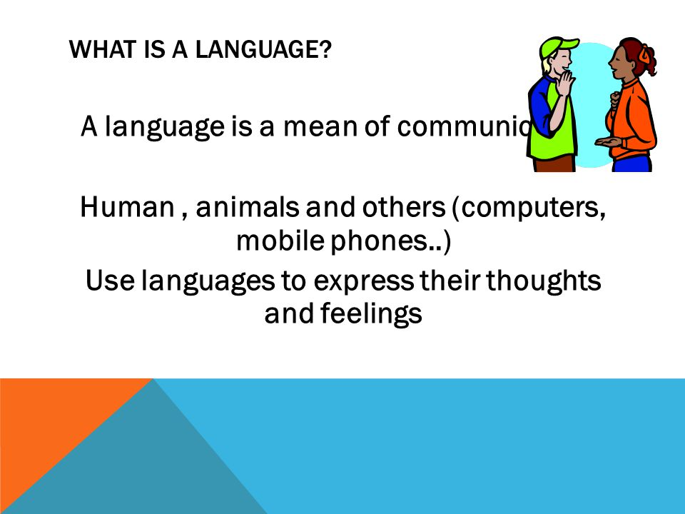 WHAT IS A LANGUAGE. A language is a mean of communication.