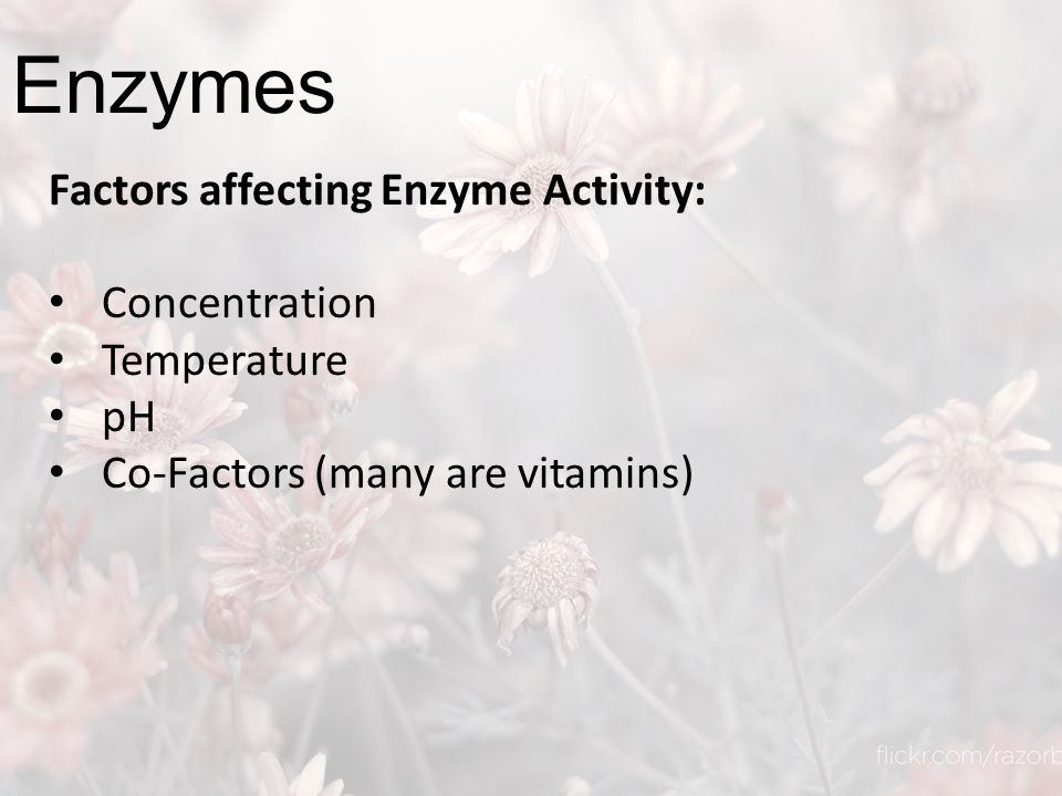 Enzymes Factors affecting Enzyme Activity: Concentration Temperature pH Co-Factors (many are vitamins)