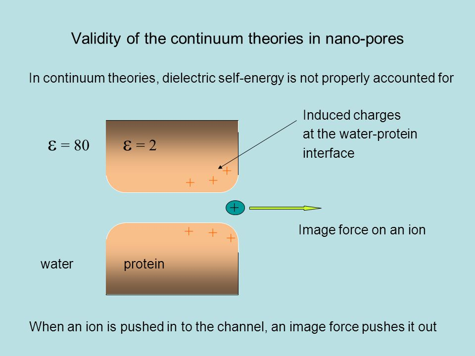 Validity of the continuum theories in nano-pores + + + + + + +  = 2  = 80 Induced charges at the water-protein interface Image force on an ion In continuum theories, dielectric self-energy is not properly accounted for When an ion is pushed in to the channel, an image force pushes it out waterprotein