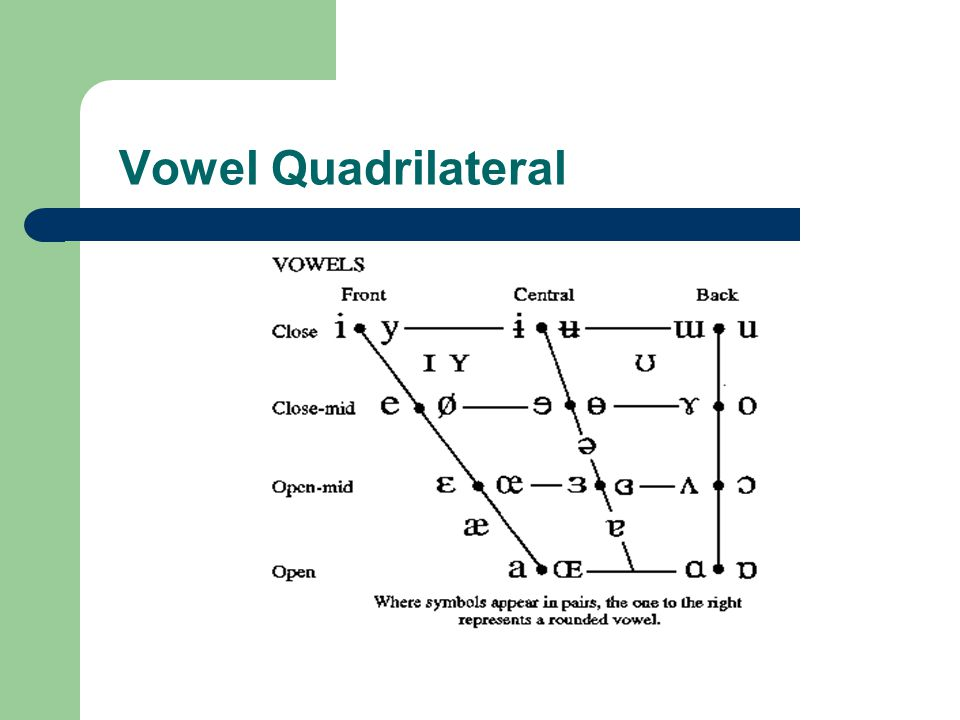 Vowel Quadrilateral