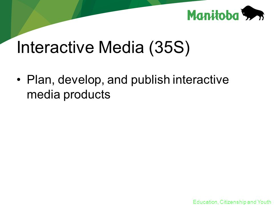 Education, Citizenship and Youth Interactive Media (35S) Plan, develop, and publish interactive media products