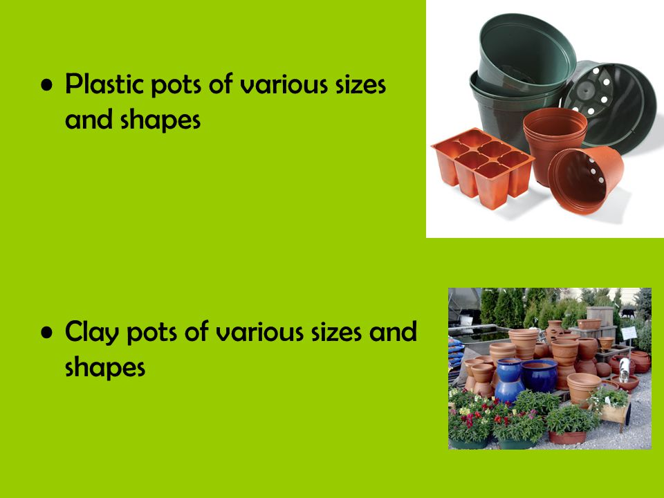 Plastic pots of various sizes and shapes Clay pots of various sizes and shapes