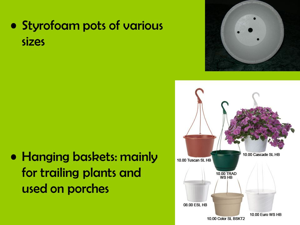 Styrofoam pots of various sizes Hanging baskets: mainly for trailing plants and used on porches