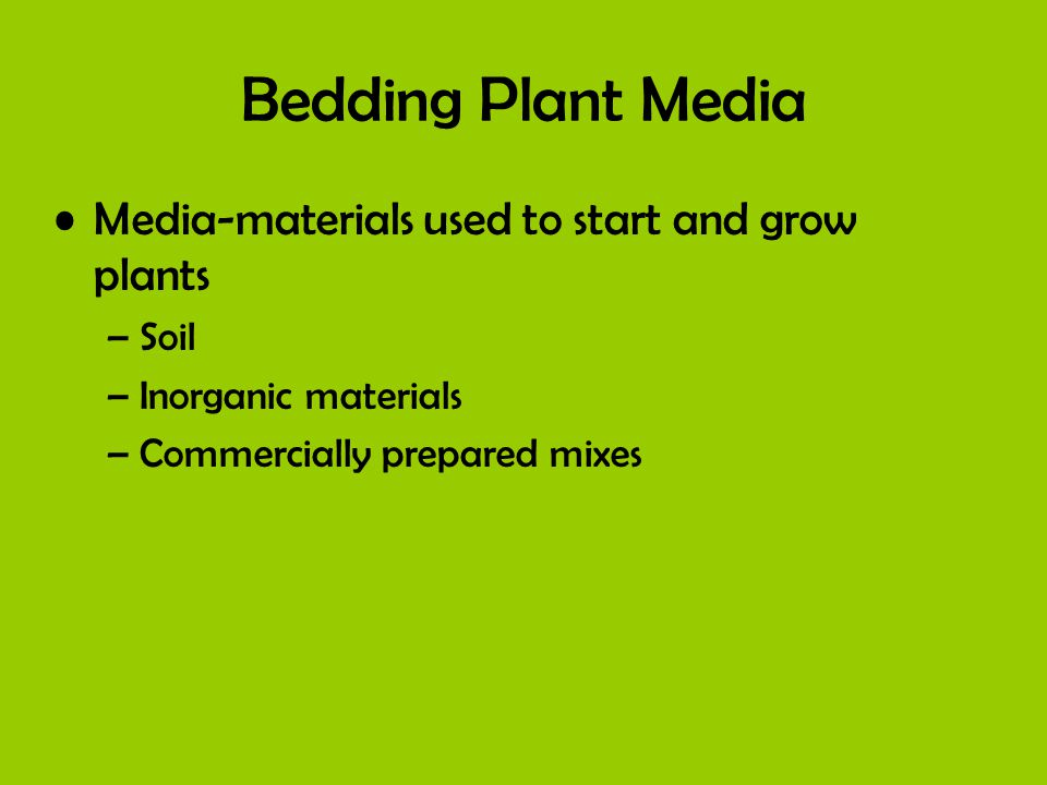 Bedding Plant Media Media-materials used to start and grow plants –Soil –Inorganic materials –Commercially prepared mixes