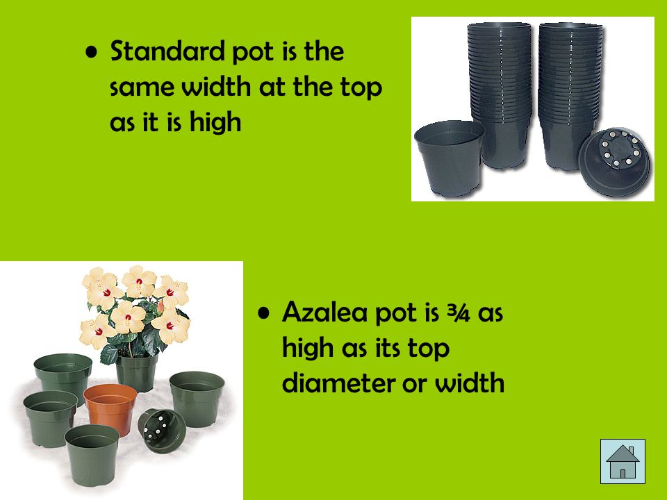 Standard pot is the same width at the top as it is high Azalea pot is ¾ as high as its top diameter or width