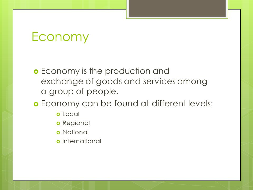 What is an Economy Economy and Government Unit