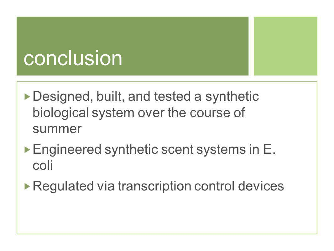 conclusion Designed, built, and tested a synthetic biological system over the course of summer Engineered synthetic scent systems in E.