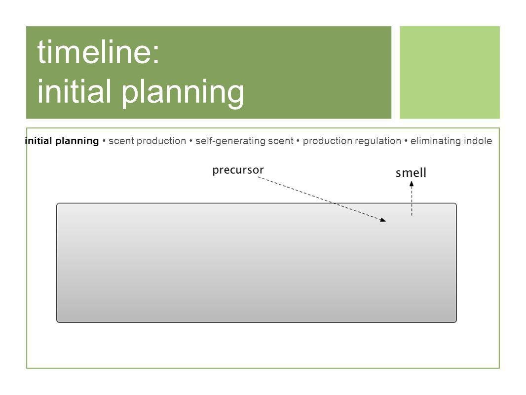 timeline: initial planning initial planning scent production self-generating scent production regulation eliminating indole
