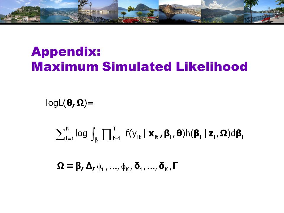 Appendix: Maximum Simulated Likelihood