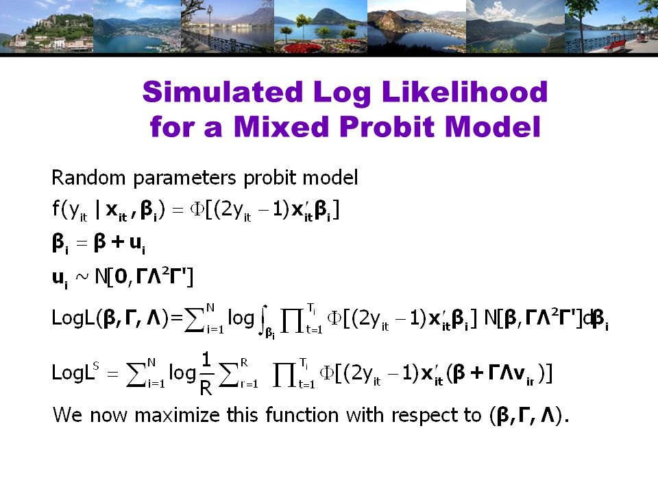 Simulated Log Likelihood for a Mixed Probit Model