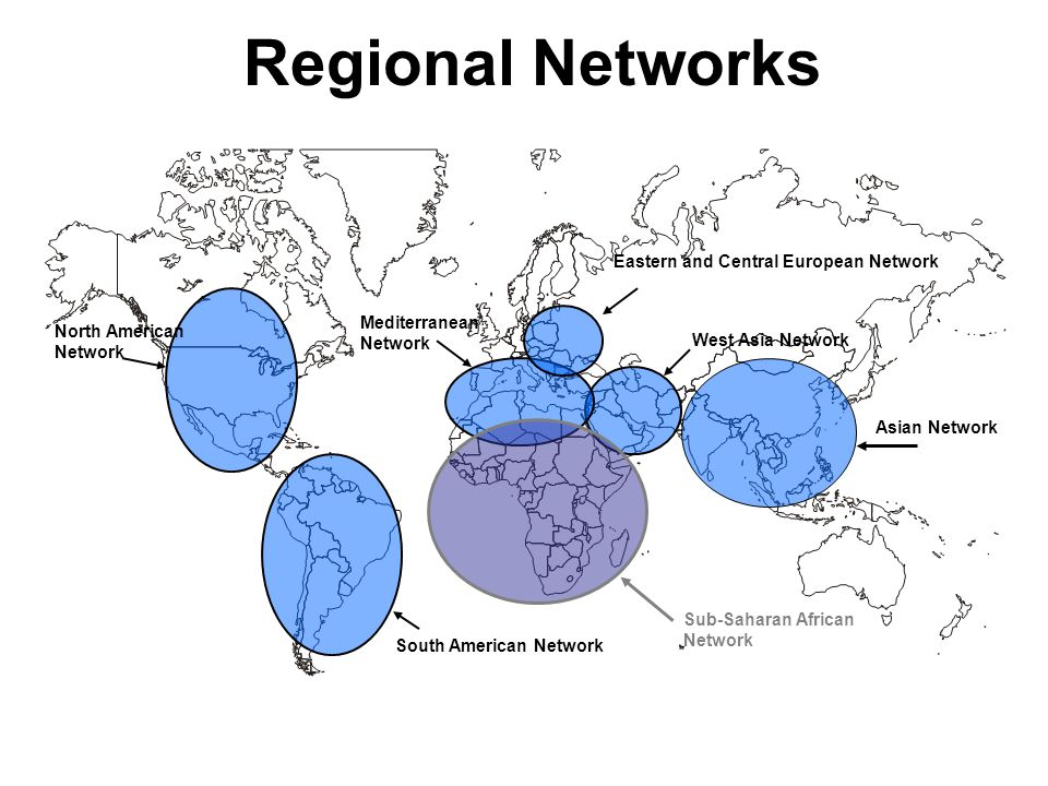 Regional Networks West Asia Network Mediterranean Network Eastern and Central European Network South American Network North American Network Sub-Saharan African Network Asian Network