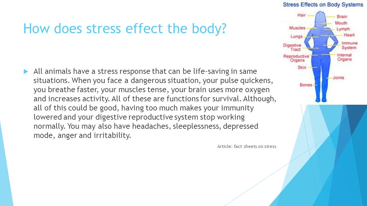 How does stress effect the body.