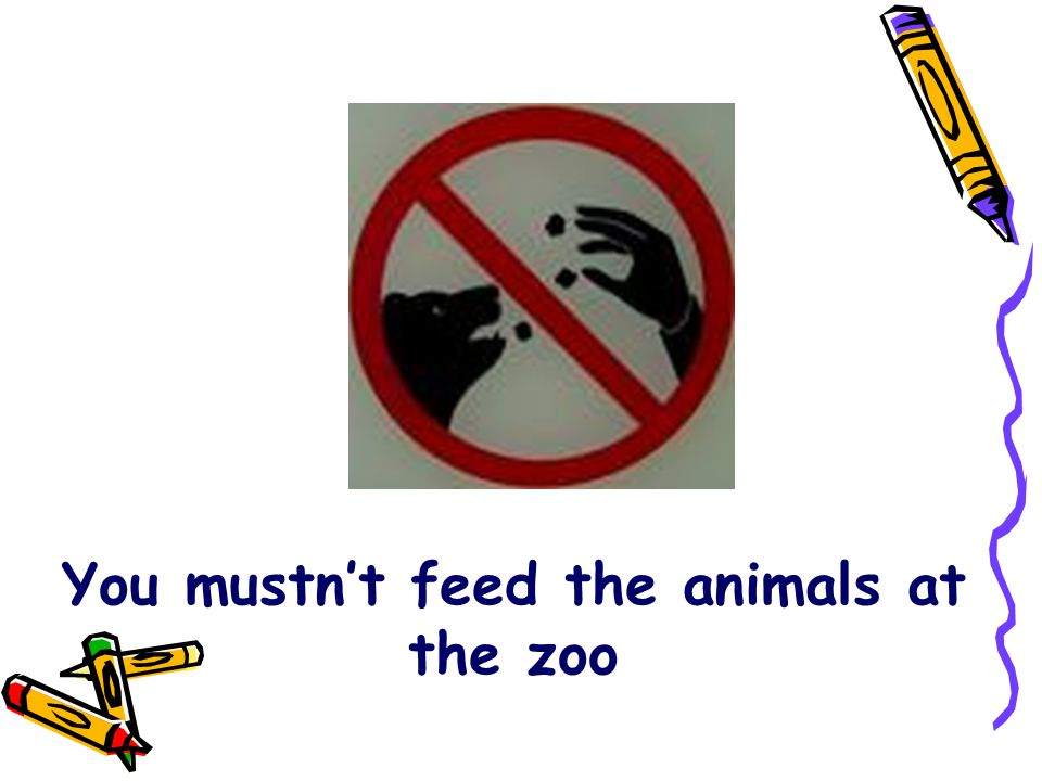 You mustn't feed the animals at the zoo