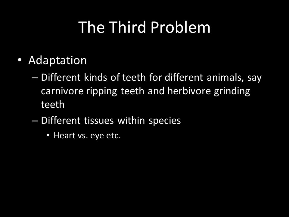 The Third Problem Adaptation – Different kinds of teeth for different animals, say carnivore ripping teeth and herbivore grinding teeth – Different tissues within species Heart vs.