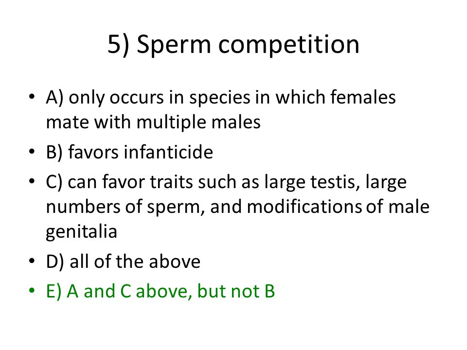 5) Sperm competition A) only occurs in species in which females mate with multiple males B) favors infanticide C) can favor traits such as large testis, large numbers of sperm, and modifications of male genitalia D) all of the above E) A and C above, but not B