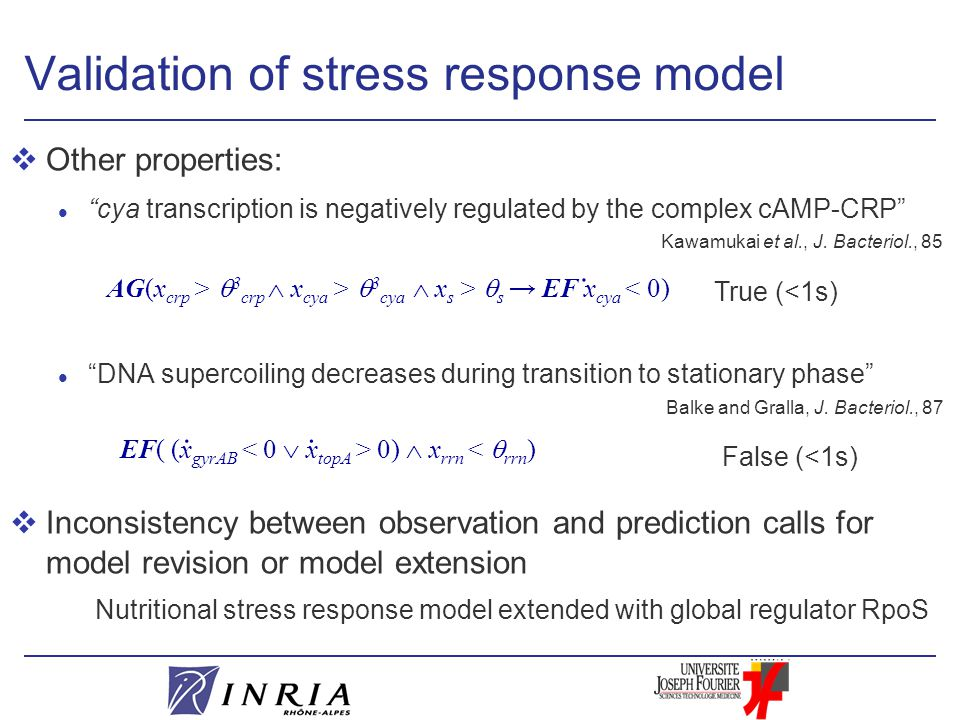 Validation of stress response model vOther properties: l cya transcription is negatively regulated by the complex cAMP-CRP l DNA supercoiling decreases during transition to stationary phase vInconsistency between observation and prediction calls for model revision or model extension Nutritional stress response model extended with global regulator RpoS True (<1s) Kawamukai et al., J.