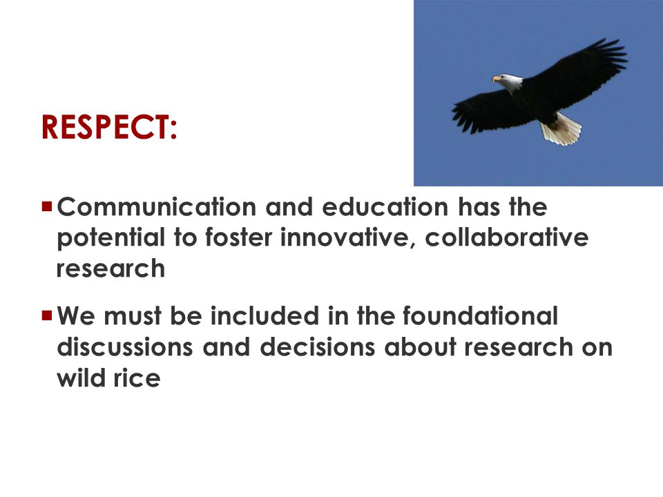 RESPECT:  Communication and education has the potential to foster innovative, collaborative research  We must be included in the foundational discussions and decisions about research on wild rice