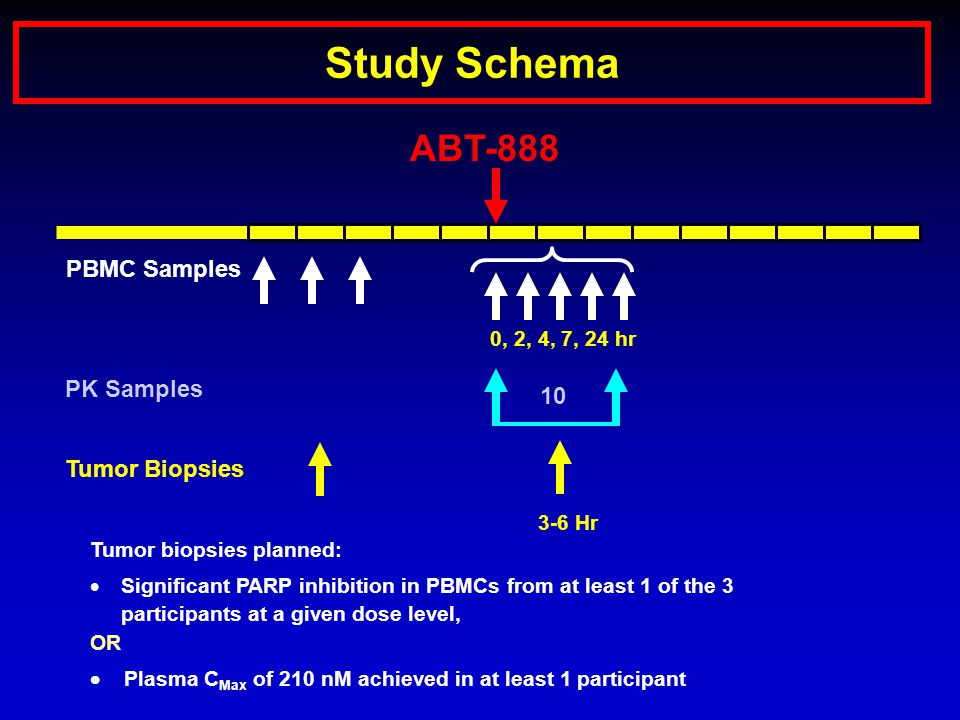 Study Schema ABT-888 Tumor Biopsies 3-6 Hr PBMC Samples 0, 2, 4, 7, 24 hr PK Samples 10 Tumor biopsies planned:  Significant PARP inhibition in PBMCs from at least 1 of the 3 participants at a given dose level, OR  Plasma C Max of 210 nM achieved in at least 1 participant