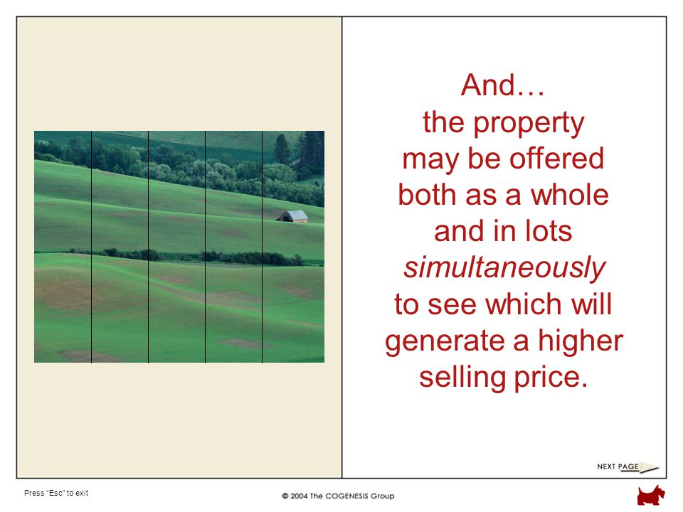Press Esc to exit And… the property may be offered both as a whole and in lots simultaneously to see which will generate a higher selling price.