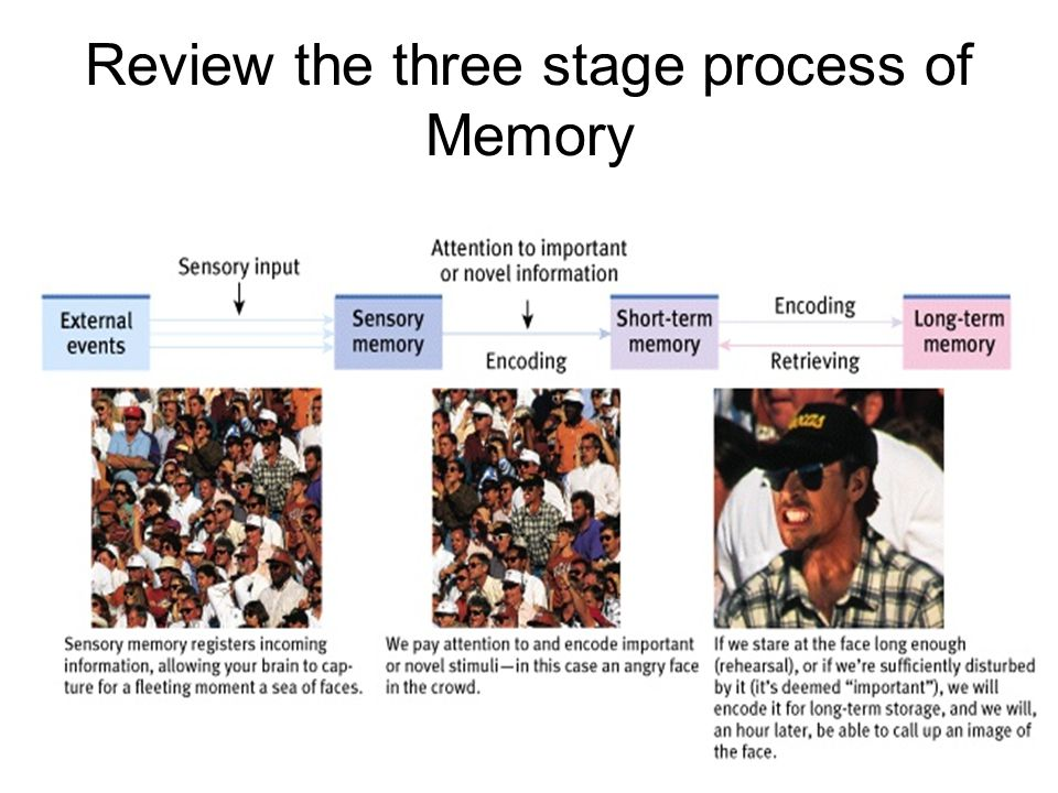 Review the three stage process of Memory