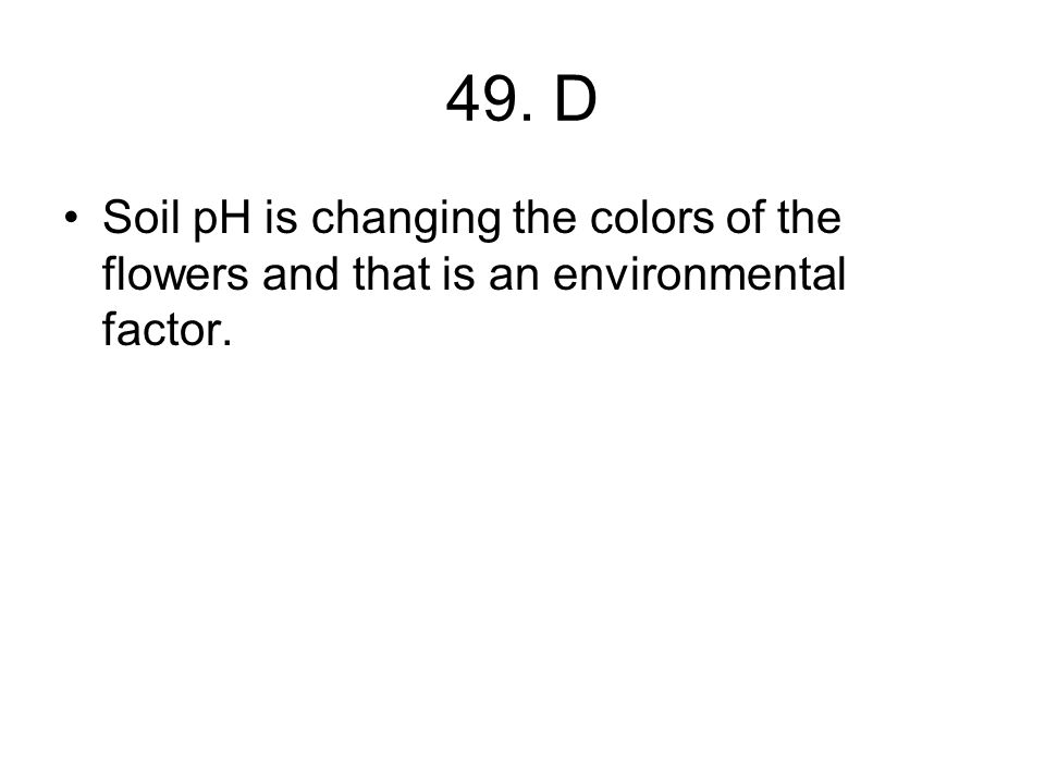 49. D Soil pH is changing the colors of the flowers and that is an environmental factor.