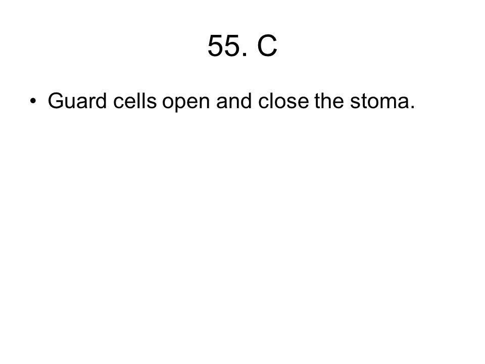 55. C Guard cells open and close the stoma.