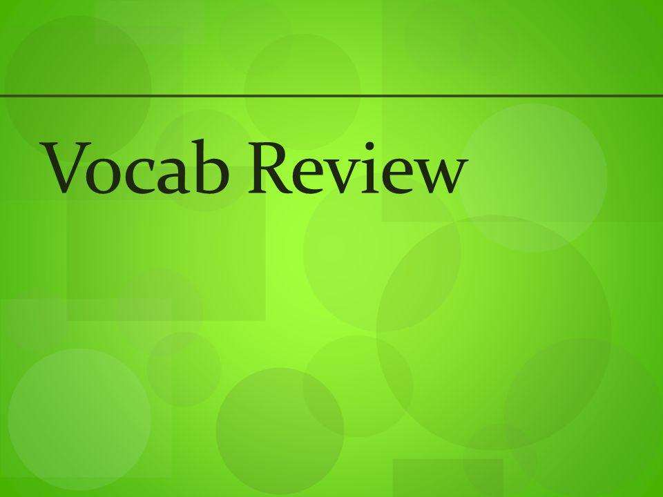 Vocab Review