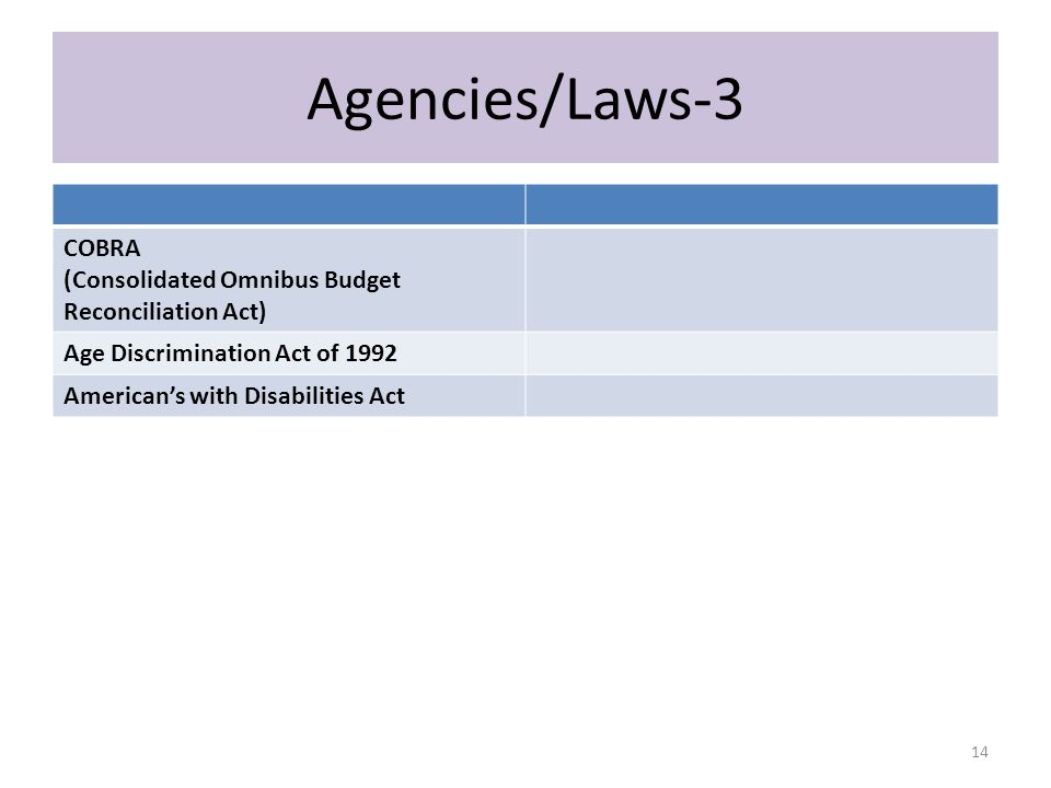 Agencies/Laws-3 COBRA (Consolidated Omnibus Budget Reconciliation Act) Age Discrimination Act of 1992 American's with Disabilities Act 14
