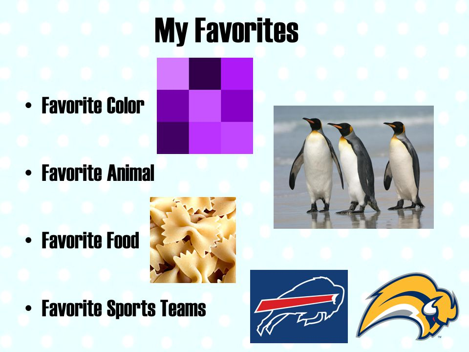 My Favorites Favorite Color Favorite Animal Favorite Food Favorite Sports Teams
