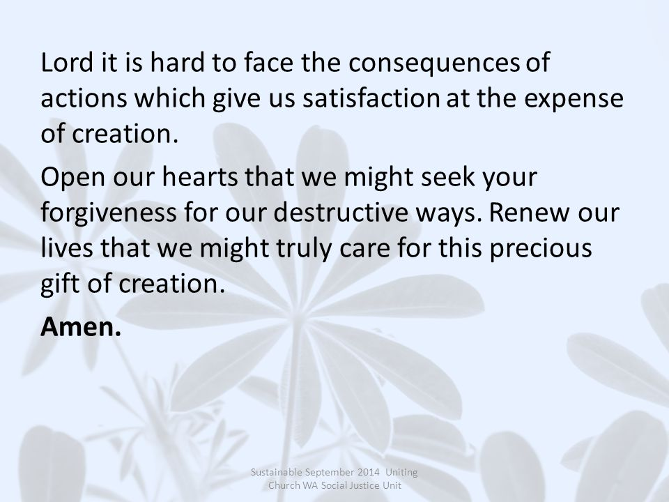 Lord it is hard to face the consequences of actions which give us satisfaction at the expense of creation.