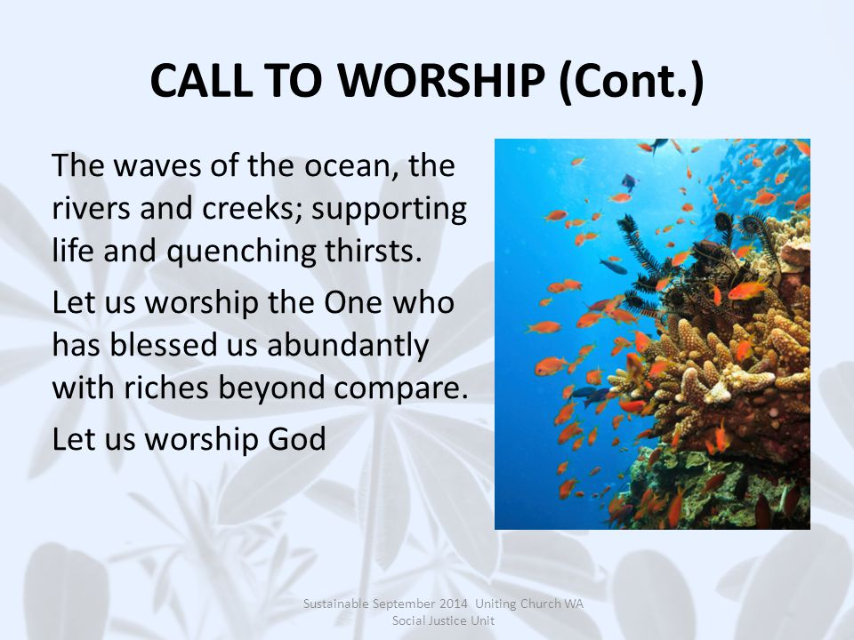 CALL TO WORSHIP (Cont.) The waves of the ocean, the rivers and creeks; supporting life and quenching thirsts.
