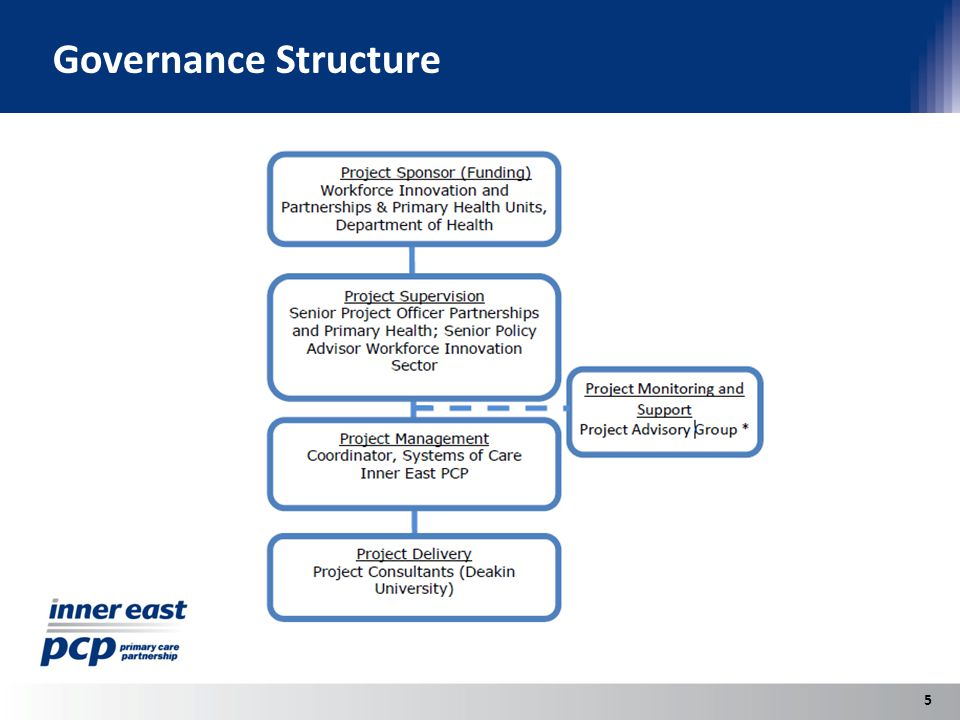 Governance Structure 5