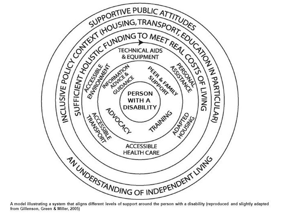 A model illustrating a system that aligns different levels of support around the person with a disability (reproduced and slightly adapted from Gillenson, Green & Miller, 2005)
