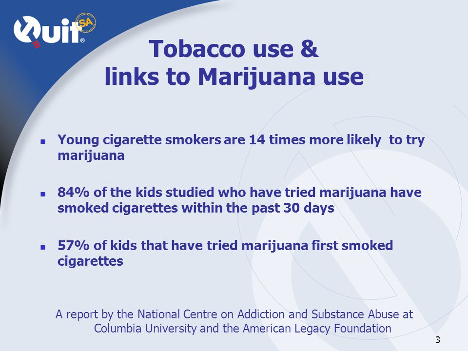 3 Tobacco use & links to Marijuana use Young cigarette smokers are 14 times more likely to try marijuana 84% of the kids studied who have tried marijuana have smoked cigarettes within the past 30 days 57% of kids that have tried marijuana first smoked cigarettes A report by the National Centre on Addiction and Substance Abuse at Columbia University and the American Legacy Foundation
