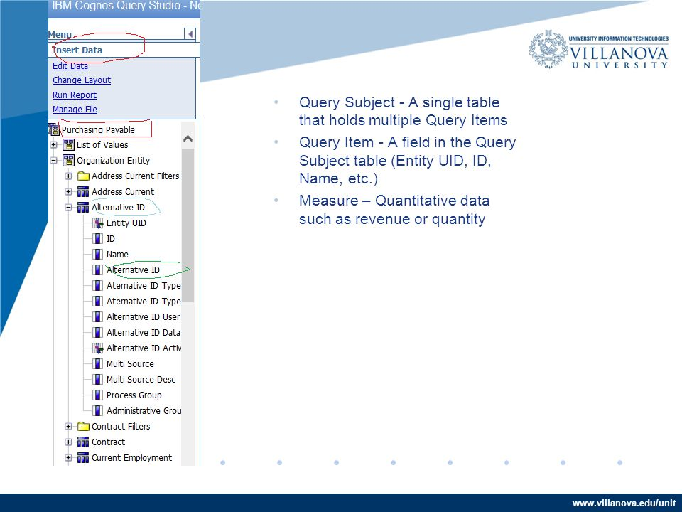 www.villanova.edu/unit Query Subject - A single table that holds multiple Query Items Query Item - A field in the Query Subject table (Entity UID, ID, Name, etc.) Measure – Quantitative data such as revenue or quantity