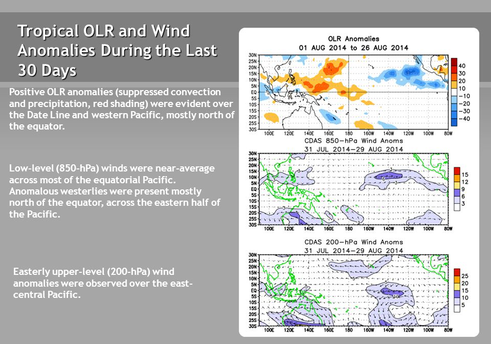 Tropical OLR and Wind Anomalies During the Last 30 Days Positive OLR anomalies (suppressed convection and precipitation, red shading) were evident over the Date Line and western Pacific, mostly north of the equator.
