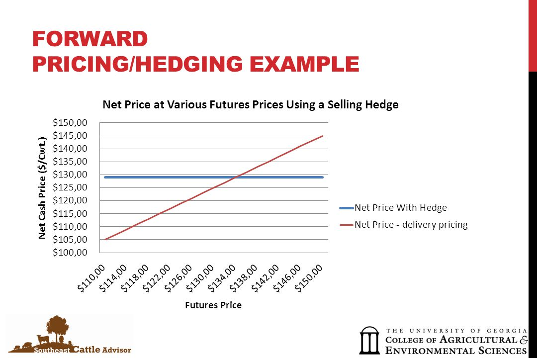 FORWARD PRICING/HEDGING EXAMPLE