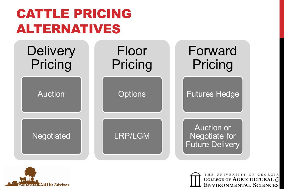 CATTLE PRICING ALTERNATIVES Delivery Pricing AuctionNegotiated Floor Pricing OptionsLRP/LGM Forward Pricing Futures Hedge Auction or Negotiate for Future Delivery