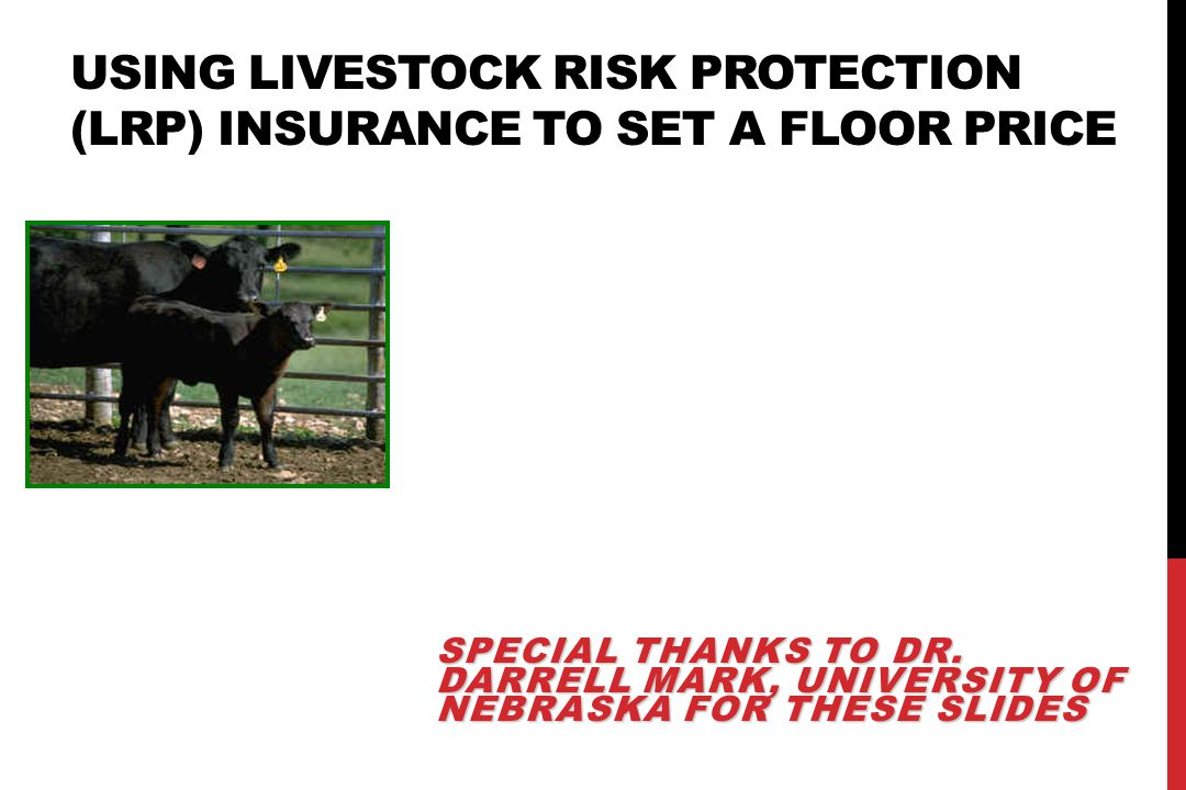 USING LIVESTOCK RISK PROTECTION (LRP) INSURANCE TO SET A FLOOR PRICE SPECIAL THANKS TO DR.