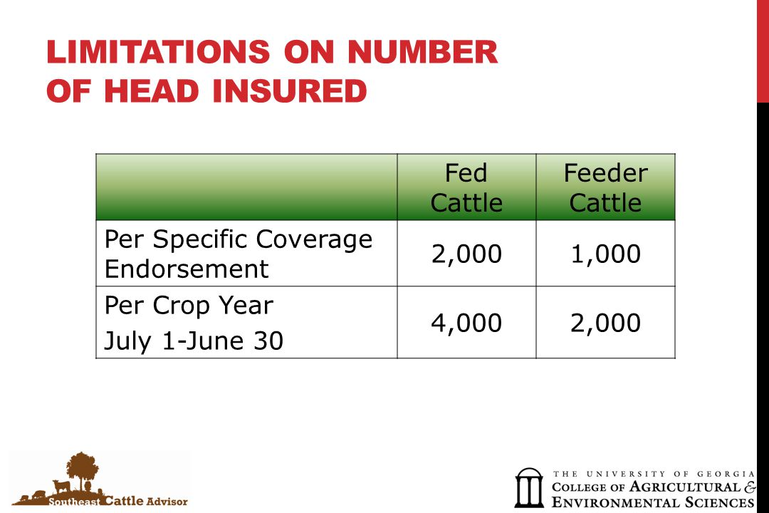 LIMITATIONS ON NUMBER OF HEAD INSURED Fed Cattle Feeder Cattle Per Specific Coverage Endorsement 2,0001,000 Per Crop Year July 1-June 30 4,0002,000