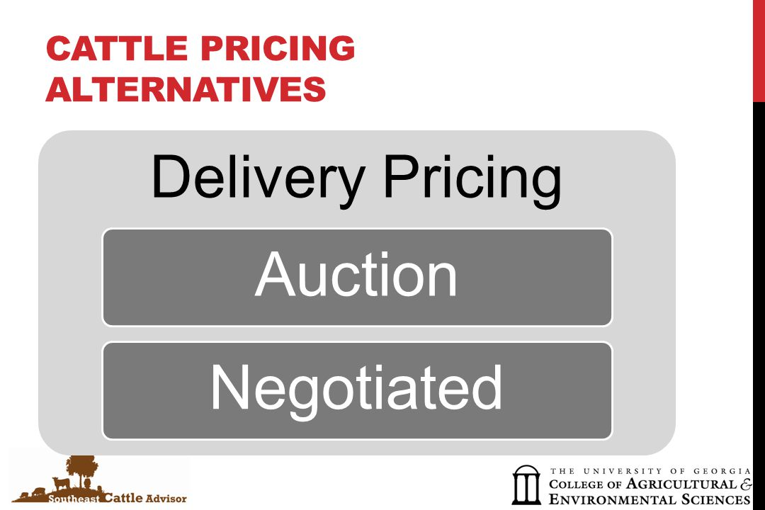 CATTLE PRICING ALTERNATIVES Delivery Pricing AuctionNegotiated