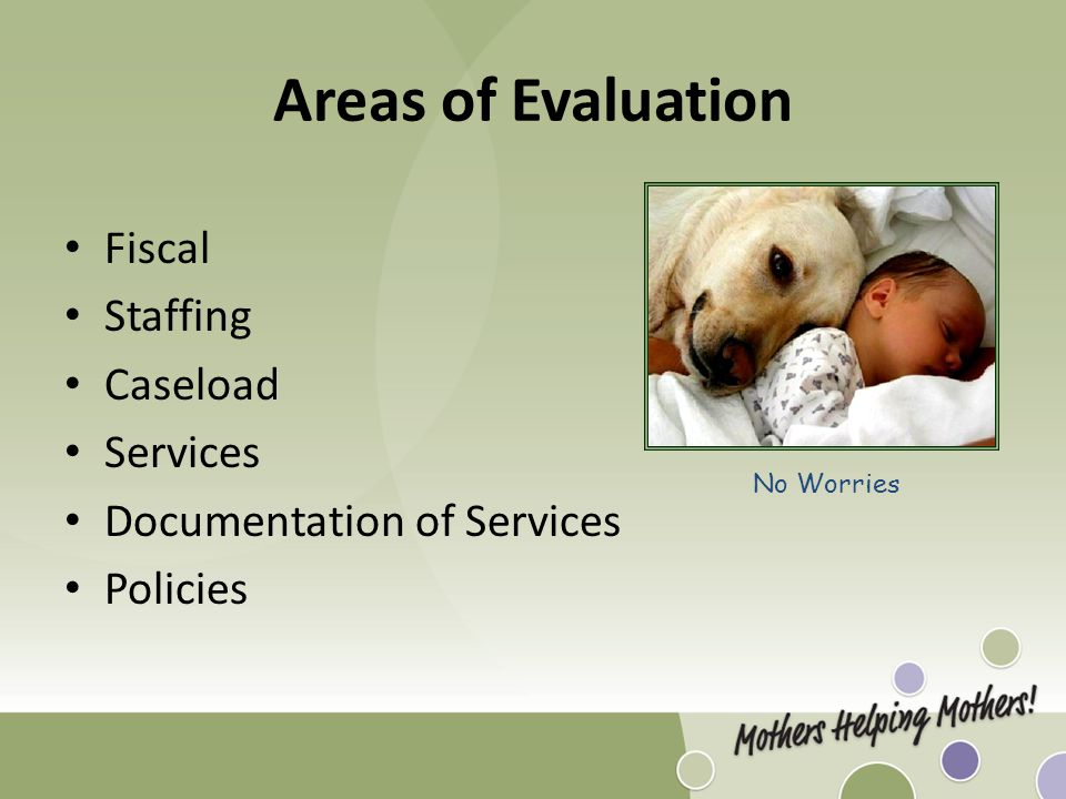 Areas of Evaluation Fiscal Staffing Caseload Services Documentation of Services Policies No Worries